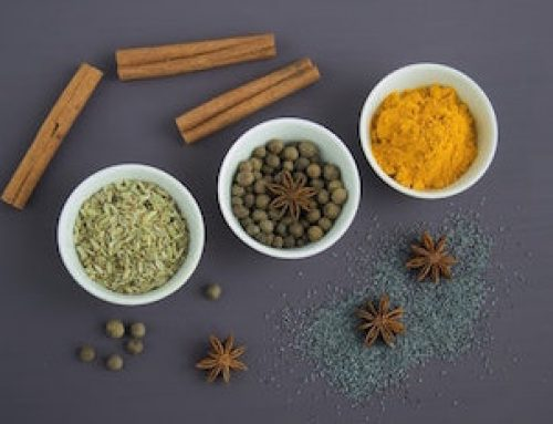 The psychology of Ayurveda – The Biological Humors