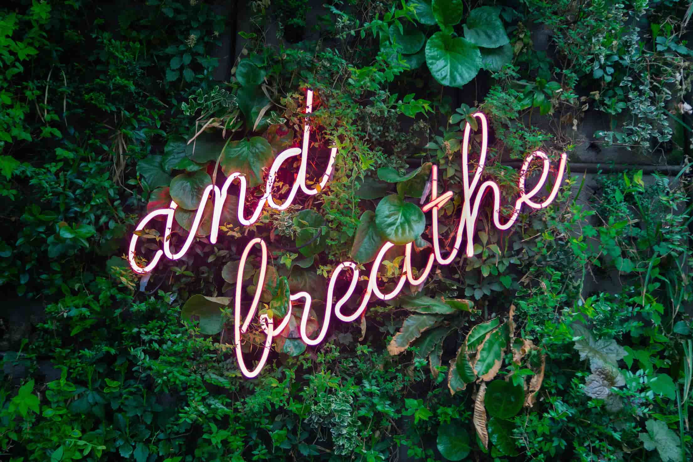 mindfulness breath relaxation