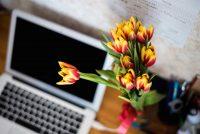 Onlinepsychologen und Onlinetherapeuten finden
