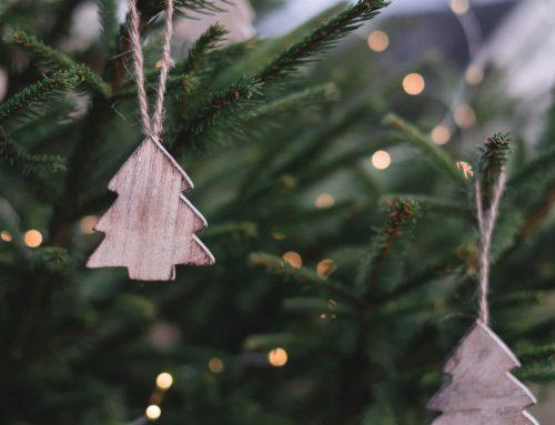 Streit unterm Weihnachtsbaum – Buddhistische Psychologie zum Fest