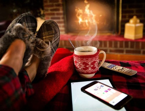 What winter teaches us about taking a rest?